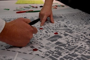public participation on government project